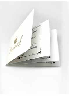 Стиль моделей 3124G6-100401G3 «Romanoff»